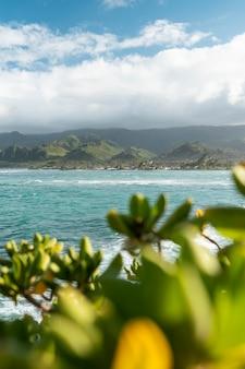 Prachtig landschap van hawaï met de blauwe zee