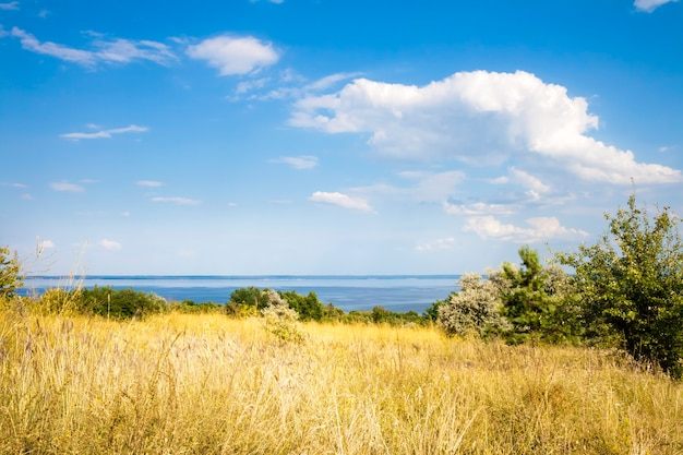 Prachtig landschap van kaniv reservoir kust oekraïne in zonnige dag met heldere bewolkte hemel