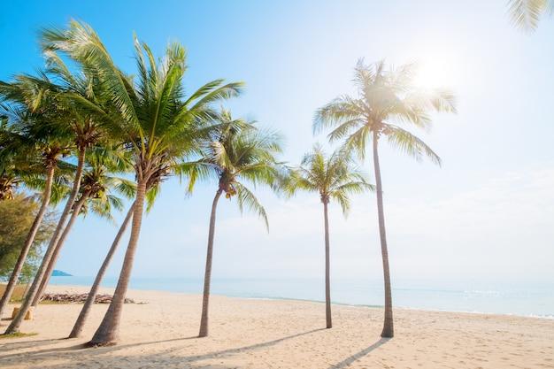 Prachtig landschap van kokospalm op tropisch strand (zeegezicht) in de zomer. zomer achtergrond concept.