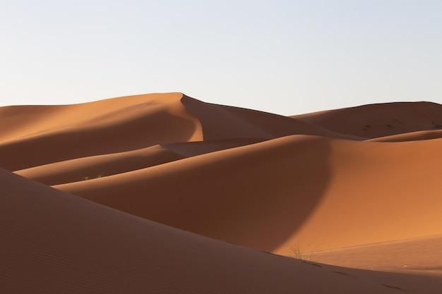 Prachtig landschap van zandduinen in een woestijngebied op een zonnige dag