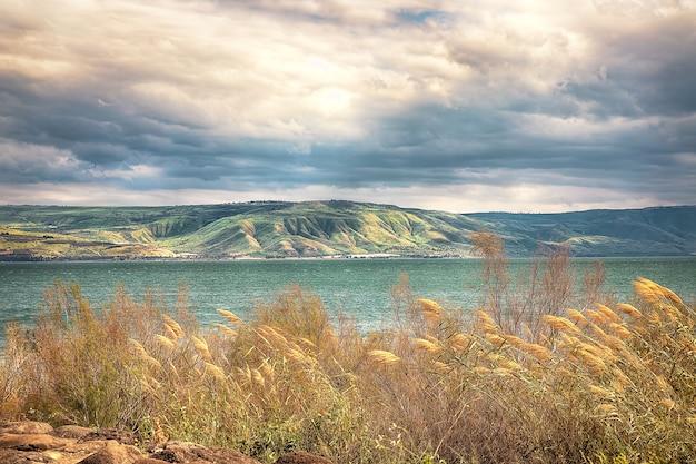 Prachtig lentelandschap bij lake kineret
