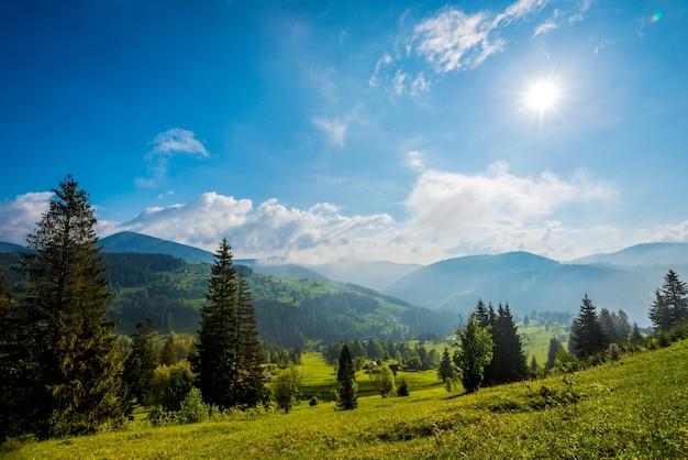 Prachtig magisch uitzicht op het sparrenbos dat groeit op de heuvels en de bergen op een zonnige warme zomerdag tegen witte wolken en blauwe lucht. concept van trekking en reizen