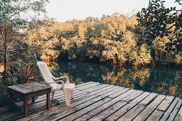 Prachtig meer en mangrovebos.