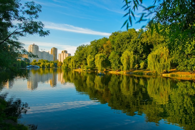 Prachtig meer in de zomer met weerspiegeling van bomen op het wateroppervlak. het prachtige stadspark in kiev