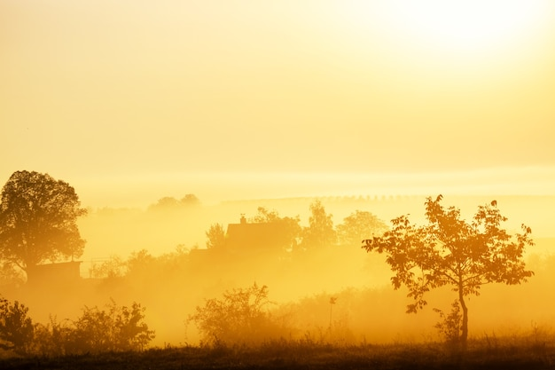 Prachtig mistig landschap tijdens geweldige zonsopgang met huis, bomen en wijngaarden. zuid-moravië, tsjechië.