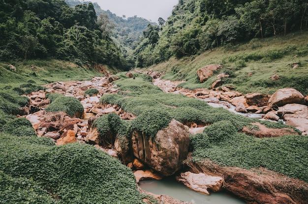 Prachtig natuurlijk landschap op riviervallei