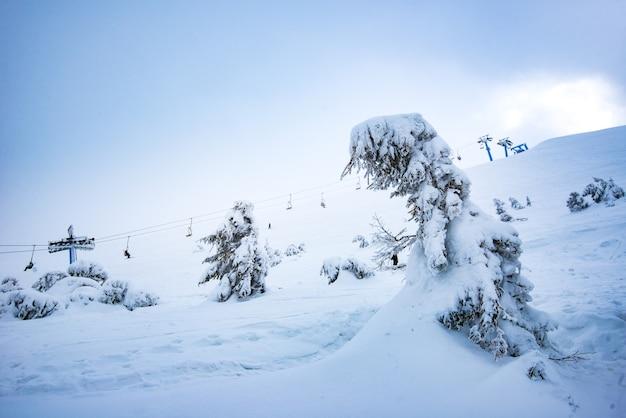 Prachtig onderaanzicht van de kabelbanen boven een pittoreske besneeuwde helling met bomen op een bewolkte winterdag