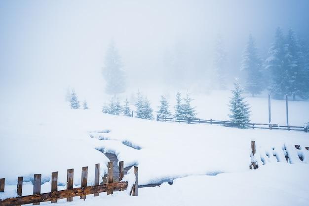 Prachtig panorama van hekken die onder hoge sneeuwbanken vandaan gluren