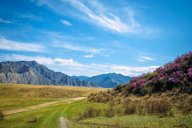 Prachtig panoramisch uitzicht op bergen in lichte nevel en blauwe lucht met witte wolken.