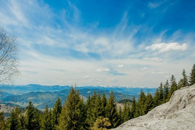 Prachtig panoramisch uitzicht op het naaldbos op de machtige karpaten en de prachtige blauwe hemelachtergrond. schoonheid van wilde maagdelijke oekraïense aard. vredigheid