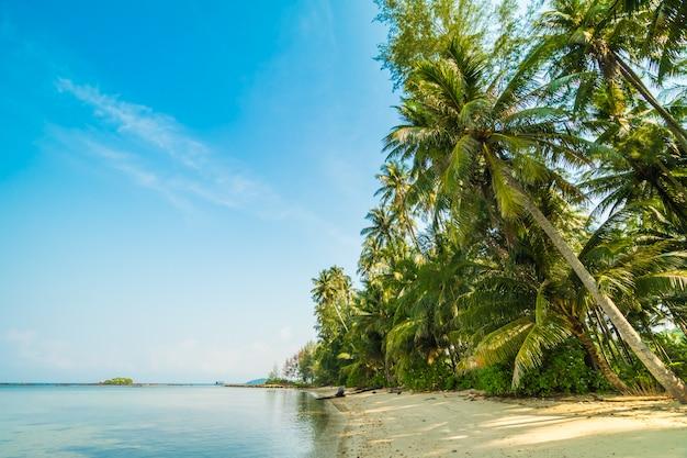 Prachtig paradijselijk eiland met strand en zee