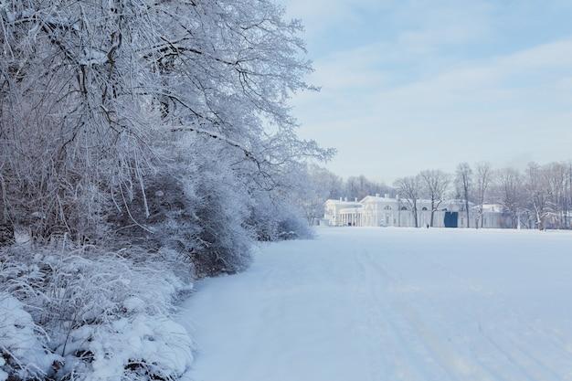 Prachtig park met paleis op yelagin island in sint-petersburg, rusland.