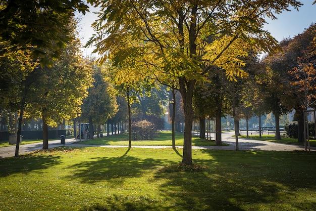 Prachtig park op een zonnige dag in de herfst in het centrum van wenen