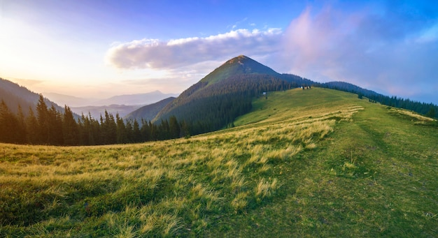 Prachtig rustig uitzicht op groene met gras begroeide steile helling en landelijke kleine boerenhutten aan de voet van prachtige verre karpaten berg in oekraïne op heldere zonnige zomerdag.