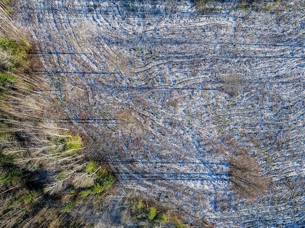 Prachtig shot in vogelvlucht van boslandschap in de winter