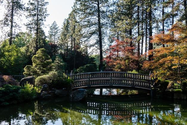 Prachtig shot van een brug over een ruil met hoge bomen