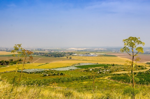 Prachtig shot van een veld met een heldere blauwe lucht