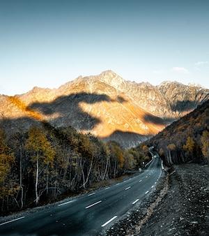 Prachtig shot van een weg omgeven door bomen