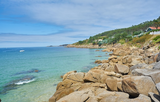 Prachtig shot van een zee met rotsachtige stenen en bomen ernaast