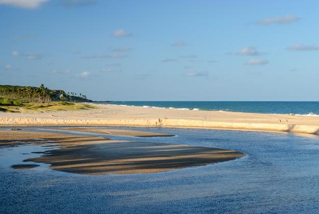 Prachtig strand conde in de buurt van joao pessoa paraiba brazil