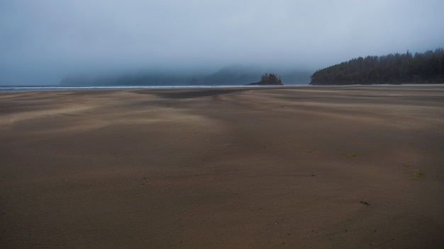 Prachtig strand dat zich kilometers lang uitstrekt, op een bewolkte en mistige, humeurige dag.