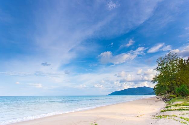 Prachtig strand met wit zand, turquoise oceaanwater en blauwe lucht met wolken in zonnige dag terwijl er dennenstruiken en ochtendglorie op de grond waren... natuurlijke achtergrond voor zomervakantie