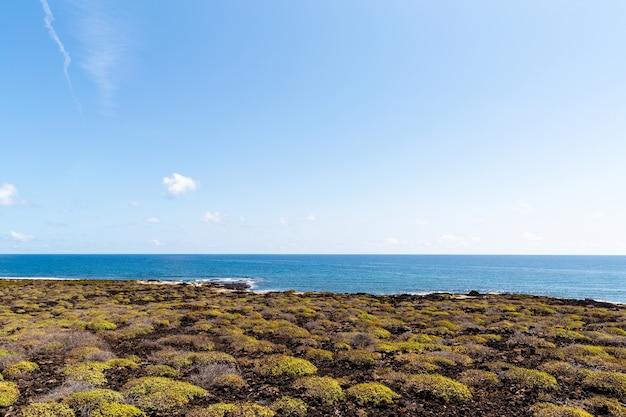 Prachtig strand op het eiland lanzarote. zandstrand omgeven door vulkanische bergen / atlantische oceaan en prachtig strand. lanzarote. canarische eilanden