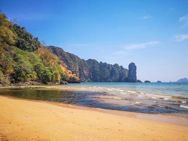 Prachtig strand tijdens zonnige zomerdag