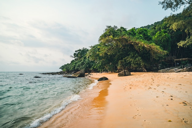 Prachtig strand. uitzicht op een mooi tropisch zandstrand met groene kokospalmen eromheen. vakantie en vakantie concept. tropisch strand op de achtergrond blauwe hemel.