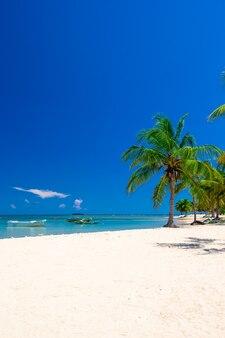 Prachtig strand. uitzicht op mooi tropisch strand met palmen rond. vakantie en vakantie concept.
