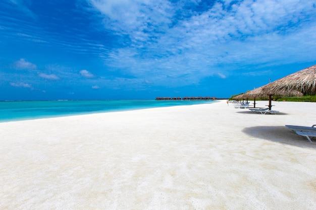 Prachtig tropisch eiland op de malediven met strand