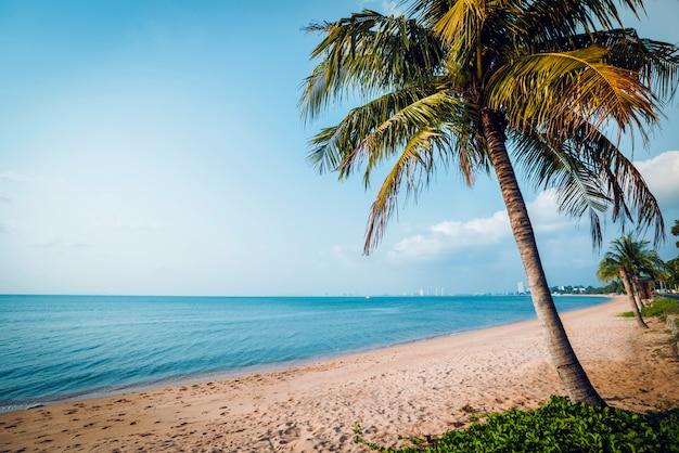 Prachtig tropisch strand met palmbomen. daglicht