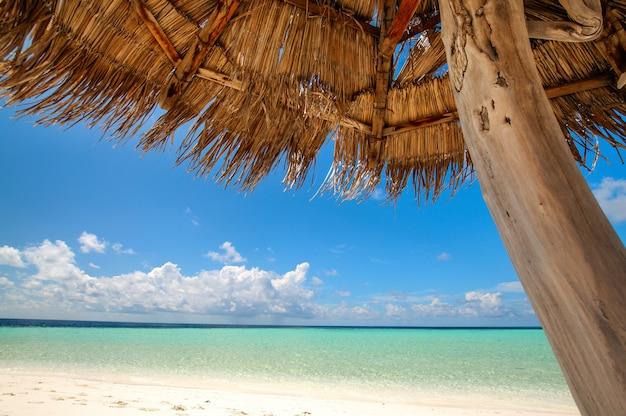 Prachtig tropisch uitzicht: strand op de malediven