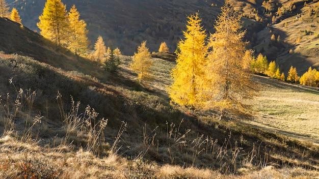 Prachtig uitzicht op de berg in de herfst
