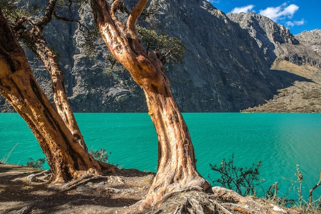 Prachtig uitzicht op de helderblauwe oceaan en de bergen in peru