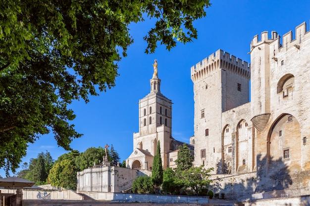 Prachtig uitzicht op de kathedraal van avignon (kathedraal van onze-lieve-vrouw van doms) en het paleis van de pausen in avignon, frankrijk