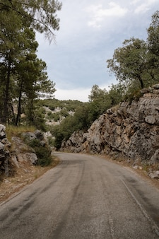 Prachtig uitzicht op de weg en de rotsachtige heuvels, bomen op een sombere dag in sierra de cazorla, jaen, espana
