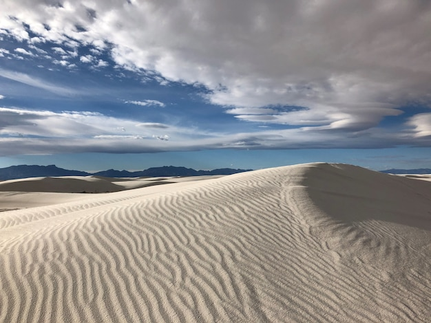 Prachtig uitzicht op de woestijn bedekt met door de wind meegevoerd zand in new mexico