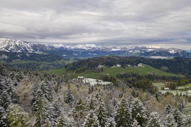 Prachtig uitzicht op glooiende heuvels en besneeuwde sparrenbomen