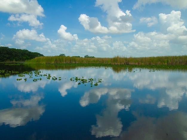 Prachtig uitzicht op het everglades-moeras in de zomer