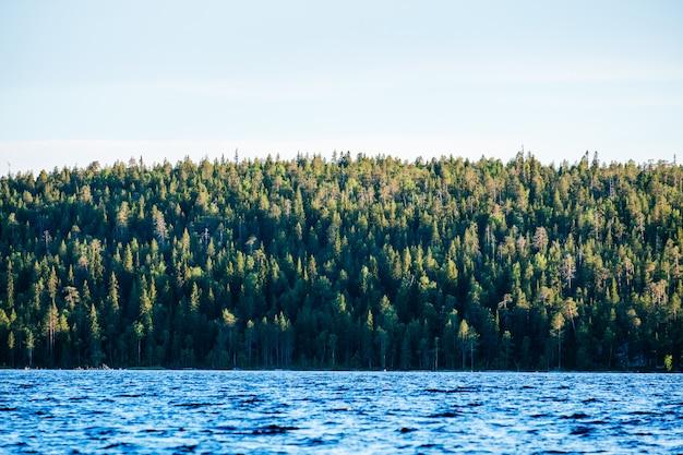 Prachtig uitzicht op het meer met groene kust