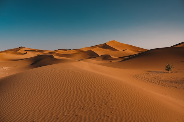 Prachtig uitzicht op rustige woestijn onder de heldere hemel gevangen in marokko