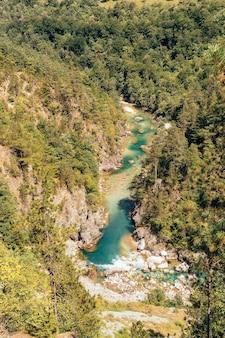 Prachtig uitzicht over de rivier de tara, durmitor national park, montenegro