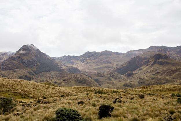 Prachtig veld met verbazingwekkende rotsachtige bergen en heuvels en verbazingwekkende bewolkte hemel