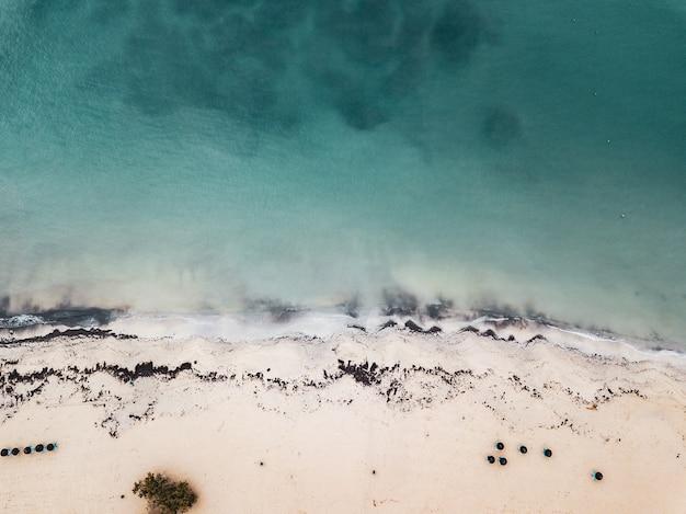Prachtig vogelperspectief van een kust en het blauwe meer in yellowstone national parl, vs.