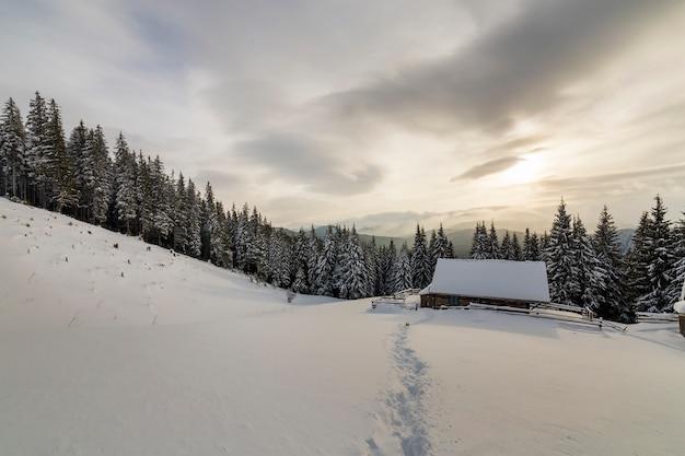Prachtig winterlandschap. houten herdershut op berg sneeuwopheldering onder pijnboombomen op bewolkte hemel