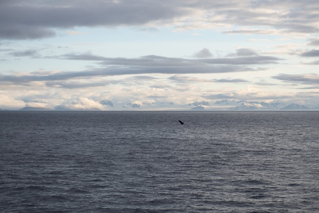 Prachtig zeegezicht hemel met wolken