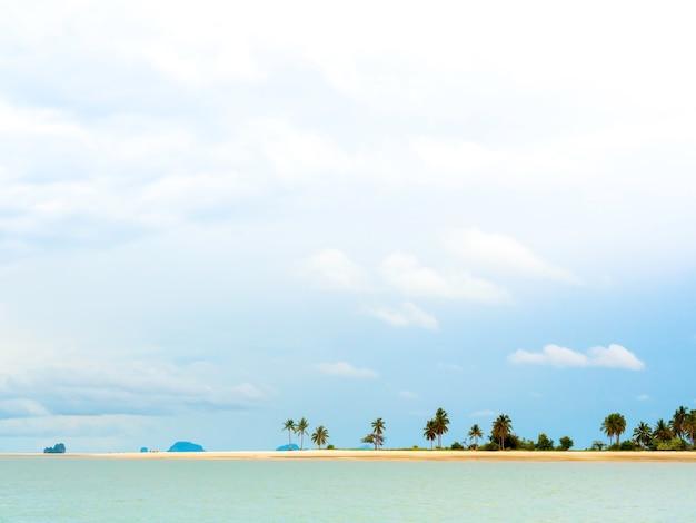 Prachtig zeegezicht zomer achtergrond minimalistische stijl met veel palmbomen aan zandstrand.