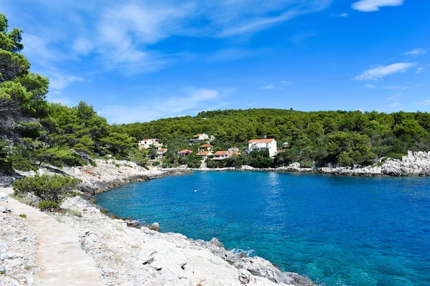 Prachtige adriatische zee in kroatië. blauwe lagune, groene dennen, steenachtige kust. voetpad langs de zee. helder landschap, mooi