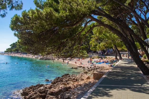 Prachtige adriatische zee kust in de buurt van brela, dalmatië, makarska riviera, punta rata, kroatië